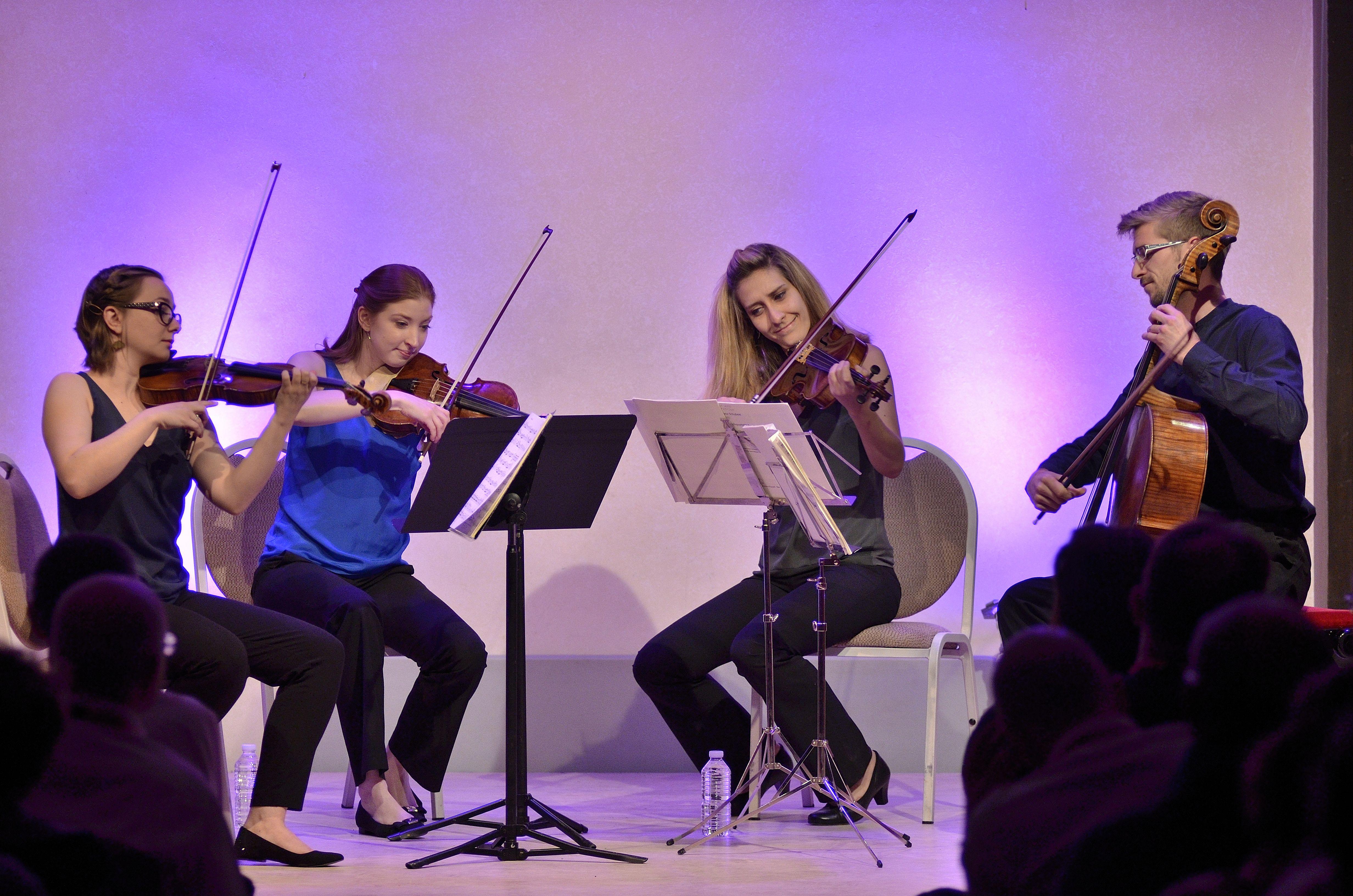 The Consone String Quartet in performance