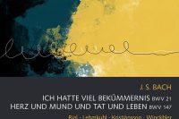 CD cover of Bach Ich hatte viel Bekümmernis Rademann